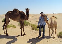 Abu Dhabi erleben - Kameltour