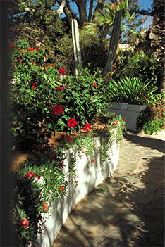La Palma Hotel auf Kanaren-Urlaub
