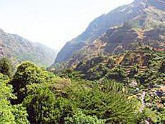 Madeira Levada-Wanderung