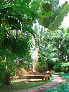 Phuket Boutique Hotel